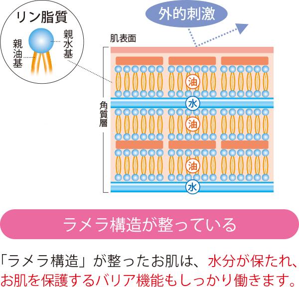ラメラ構造の説明図